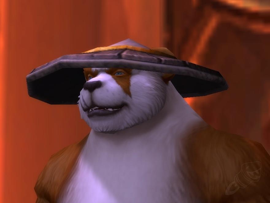 chapeau de paille cuir wow